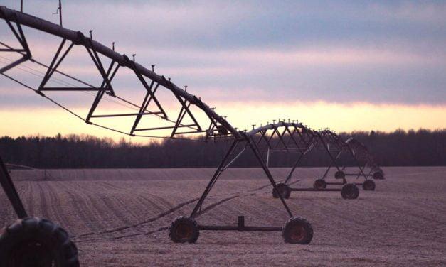 Área irrigada no Brasil cresce 18,96% em 2020