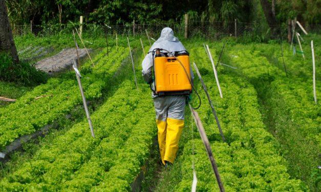 Sindiveg disponibiliza nova etapa de treinamento gratuito e com certificado sobre defensivos agrícolas