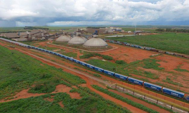 Nova operação de trem com 120 vagões da Rumo marca o início da safra plena de soja em Mato Grosso