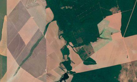 Seguradoras adotam sensoriamento remoto por satélite para monitorar áreas agrícolas