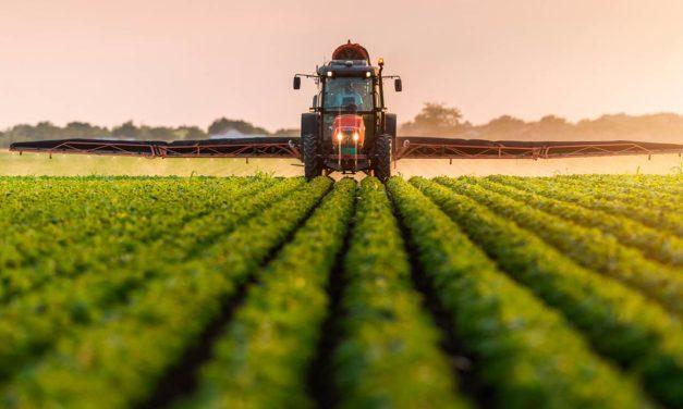 Associadas do Sindiveg investiram R$ 700 milhões na cadeia de produção de alimentos em 2020