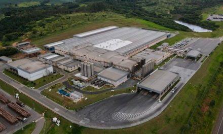 Cooperativas de lácteos dos Campos Gerais fecham 2020 com mais de R$ 2 bilhões de faturamento