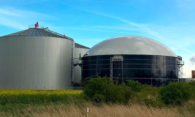 Incentivo de cooperativas agropecuárias e empresas ajudam setor de biogás crescer