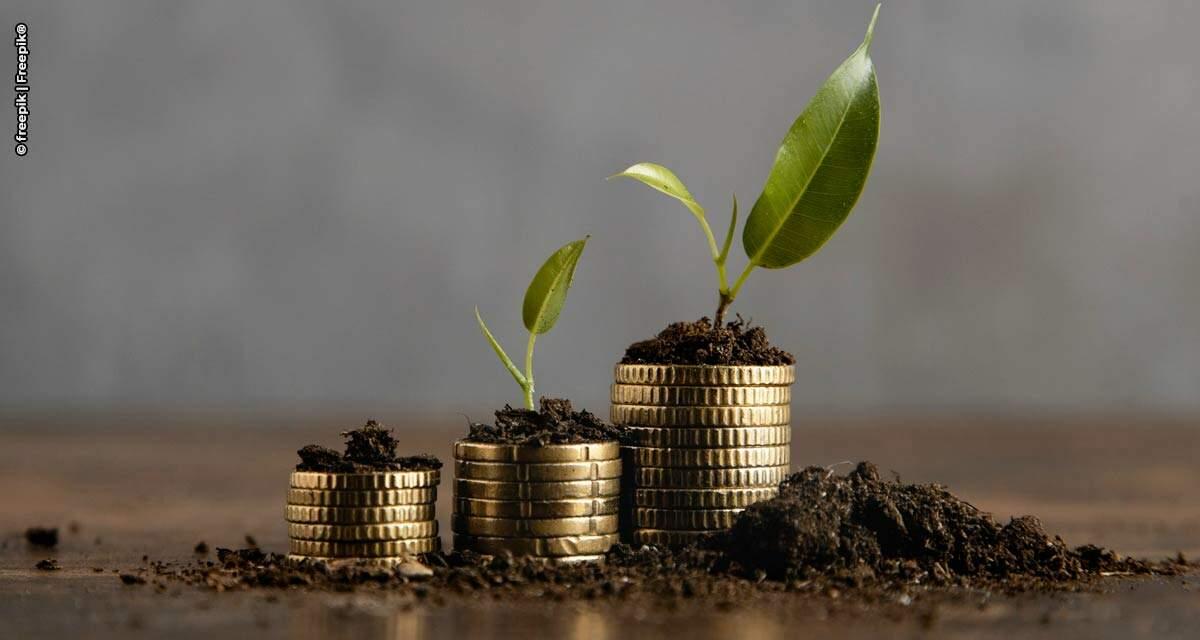 Alta das commodities deve ser aproveitada para investimento em produtividade do agronegócio