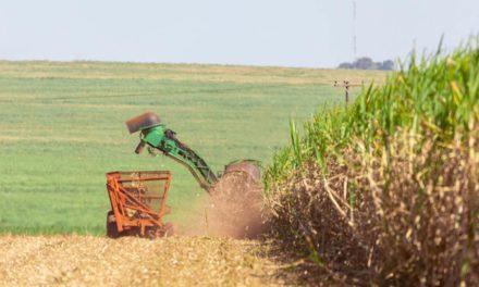 Agronegócio: exportações do Complexo Sucroalcooleiro crescem 37,4% entre janeiro e abril de 2021 e aumentam superávit