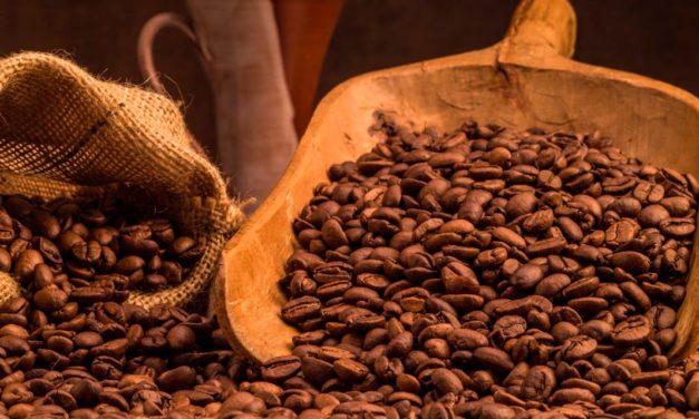 De plantações de café a potes e xícaras fumegantes: a rota do café do Brasil para o mundo