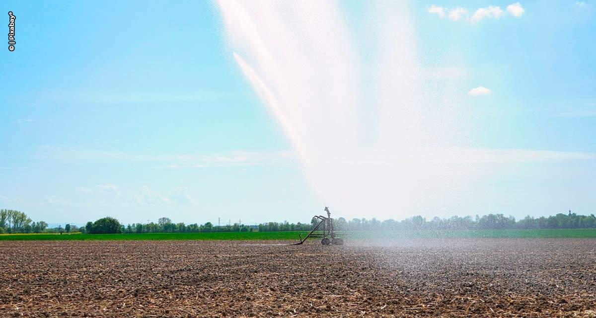 Paraná ganha competitividade no agro por causa da isenção de ICMS nos sistemas de irrigação