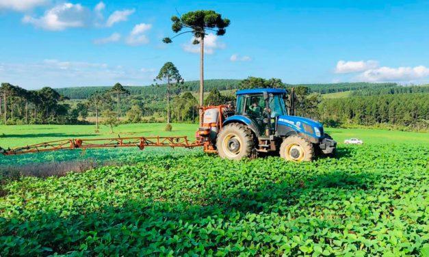 Tecnologia biológica ajuda agricultores a proteger o solo e a obter melhor produtividade