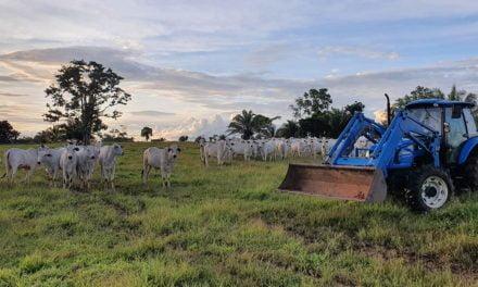 Trator é ferramenta essencial na pecuária moderna