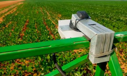 Inteligência Artificial na rotina do produtor rural: Cromai otimiza experiência no campo e anuncia parceria com multinacional