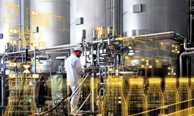 A bioinovação na alimentação: novos ingredientes e novos produtos com oportunidade de alavancar a economia brasileira