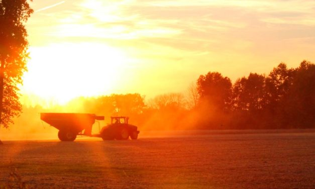 """""""A produção agropecuária não é uma vilã, há maneiras de adotar uma produção 100% sustentável e boa para o meio ambiente"""""""