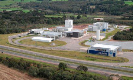 Ranking Leite Brasil 2021: Unium é segunda maior produtora de leite do país