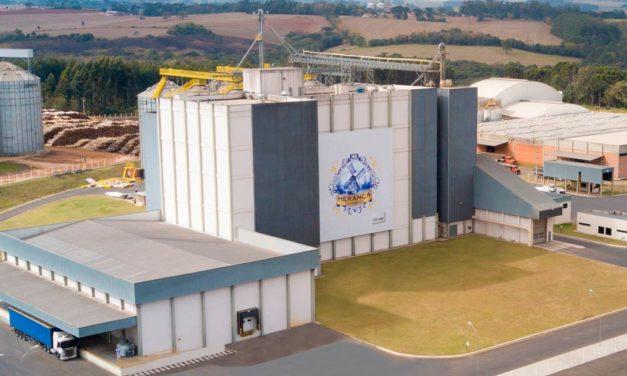 Agroindústrias: cooperativas brasileiras encontram na industrialização estratégia para alavancar faturamento