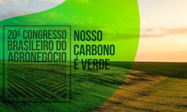 Estruturação e integração são fundamentais para o desenvolvimento do mercado de carbono verde no país