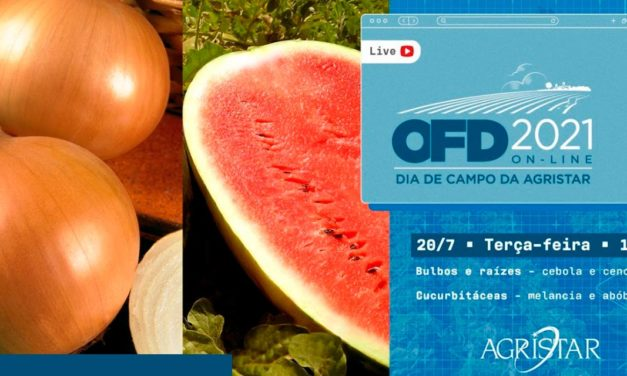 Horticultura: Dia de Campo da Agristar começa hoje com novidades para o setor e participações especiais