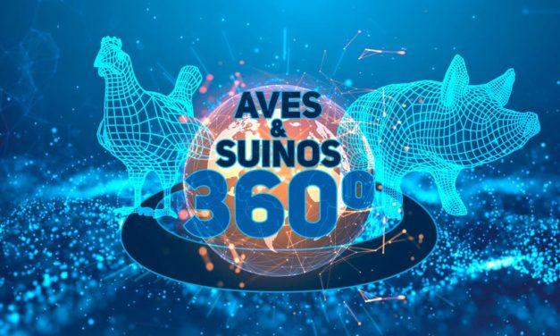 Evento para fomentar negócios do setor de Aves e Suínos será realizado em novembro, na capital paulista