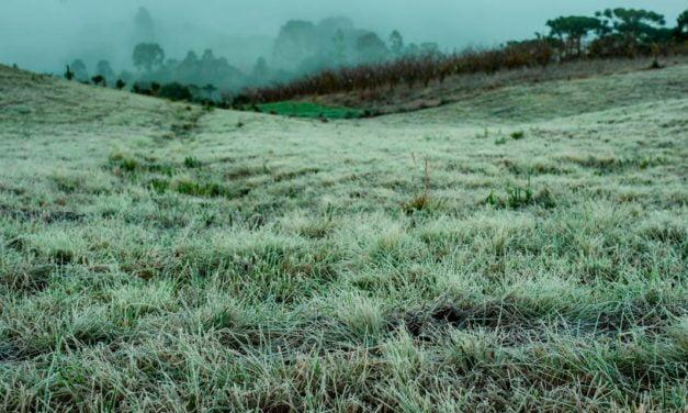 Mudança climática e Sustentabilidade no Agronegócio