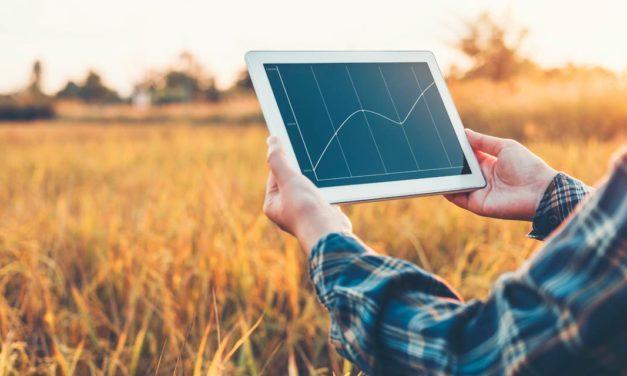 Edge Computing: tecnologia inovadora permite decisões mais ágeis e inteligentes no agro