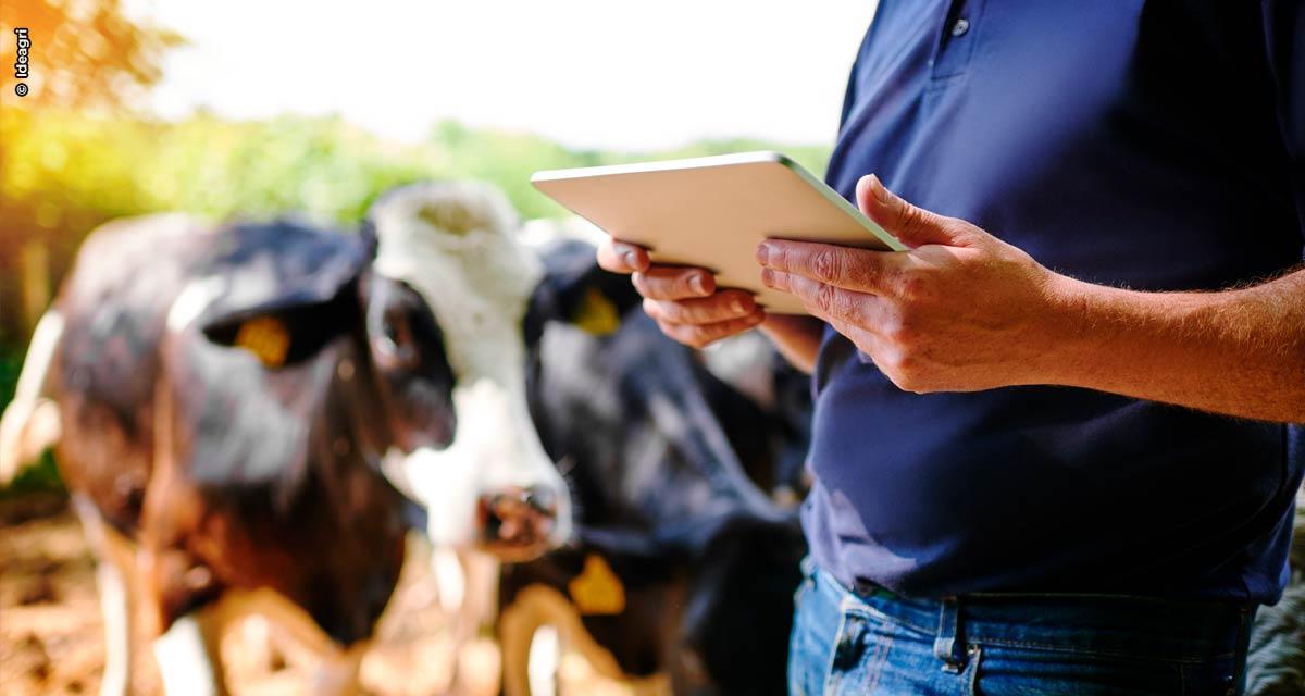 Ideagri lança inédito simulador de produtividade e faturamento para o produtor de leite