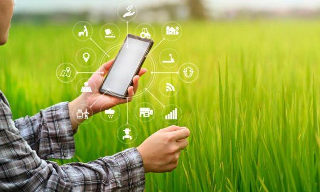 Distribuidores usam a tecnologia para prever e diminuir os riscos da próxima safra