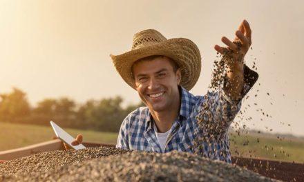 Dia do agricultor: parabéns aos responsáveis pela economia e pela alimentação do brasileiro
