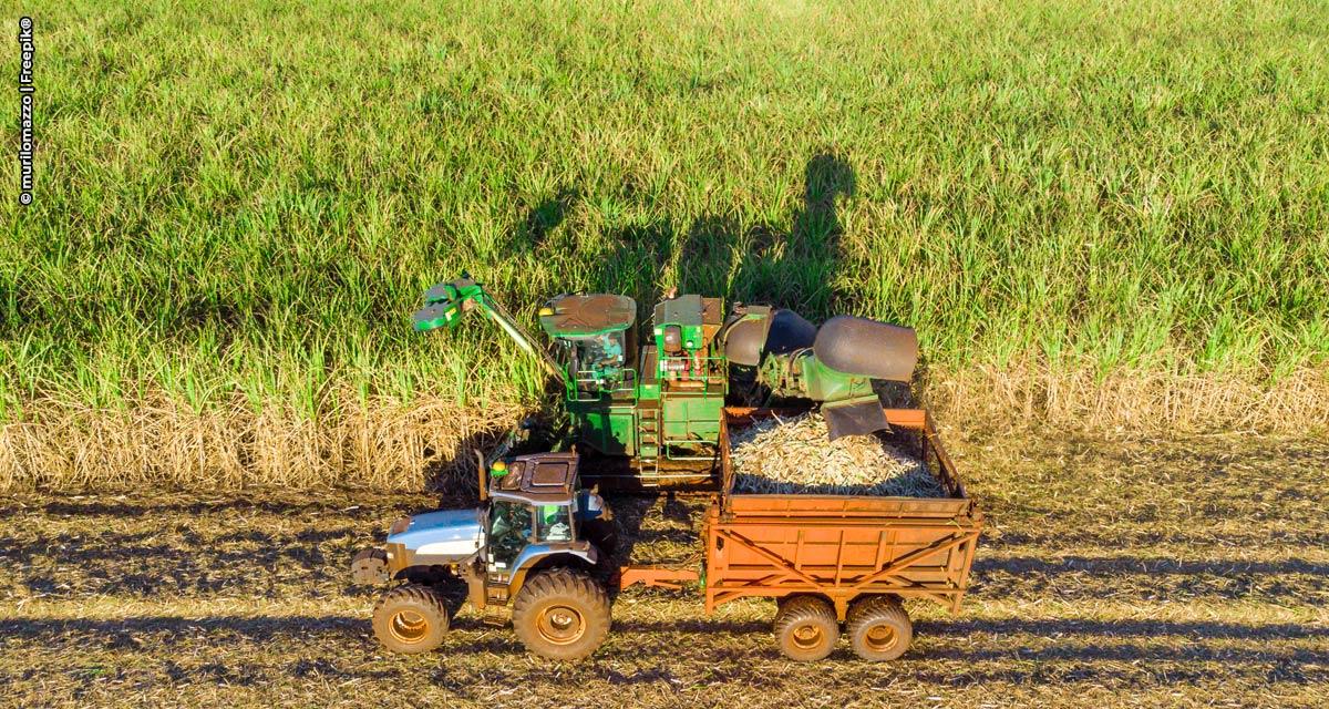 Tecnologia reduz consumo de combustível em colheitadeiras de cana de açúcar