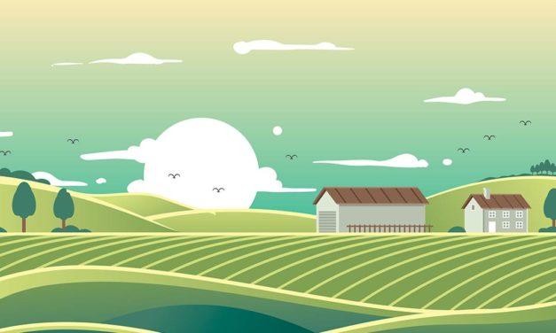 Governo de SP lança programa AgroSP+Seguro e anuncia R$ 215 milhões para crédito e seguro rural em apoio a produtores