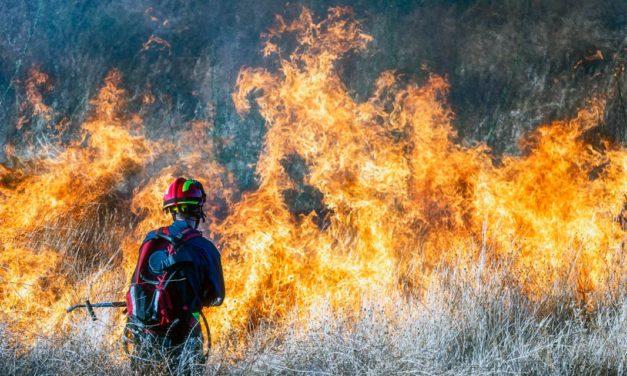 ABNT lança Guia de requisitos e procedimentos básicos para combate a incêndios florestais