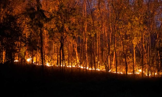 Faesp reforça campanha de conscientização contra incêndios