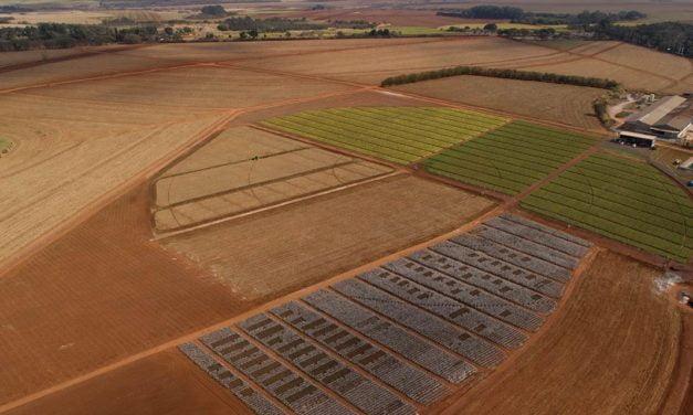 ICL América do Sul anuncia parceria com AgTech Garage,  principal hub de inovação do agro na América Latina