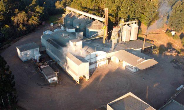 BRF moderniza e amplia fábrica de rações em Gaurama