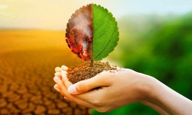 107 empresas brasileiras assinam compromisso com o combate às mudanças climáticas