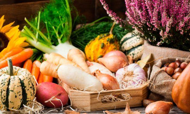 Dia Mundial do Vegetarianismo: 30 milhões de brasileiros são adeptos do estilo de vida