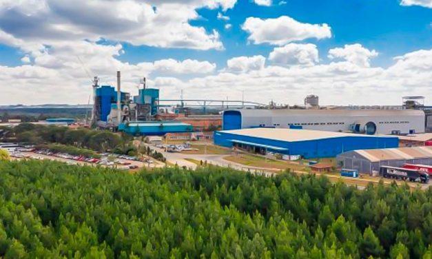 Após término da expansão já está em operação a maior fábrica de papel kraftliner da América Latina