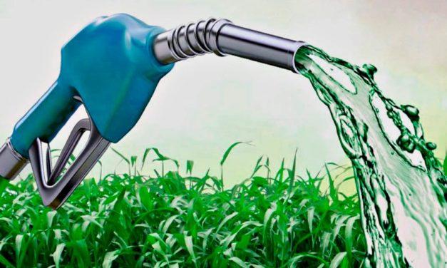 Biocombustível: entenda sua importância para a sustentabilidade