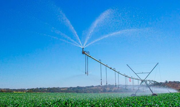 Com uma das maiores áreas irrigadas do País, Paracatu se destaca na produção agrícola