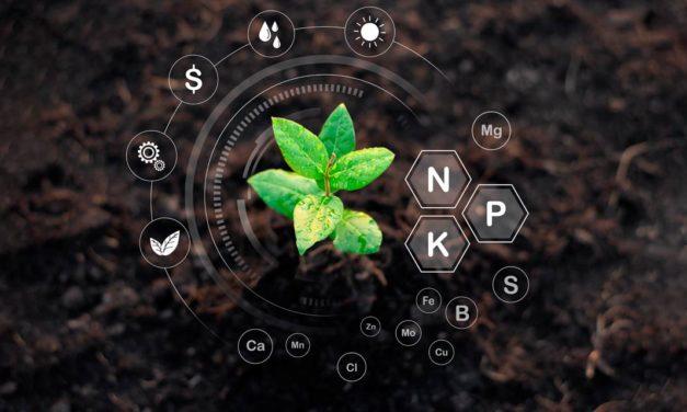8º Congresso Brasileiro de Fertilizantes mostrará as expectativas do setor e sua contribuição para a evolução do agro nacional