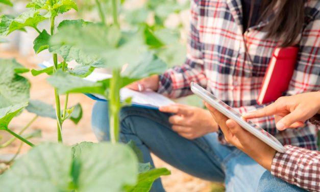 Engenheiro Agrônomo destaca-se no agronegócio brasileiro