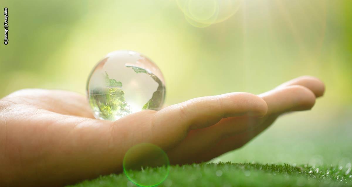 Setor privado defende que o Brasil apoie a regulamentação do mercado global de carbono na COP 26