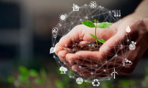 Créditos de Carbono: como preparar seu negócio para as metas de reduções climáticas