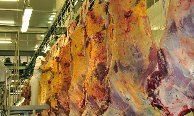 FAESP pede ao governo mais esforço diplomático para retomar venda de carne à China