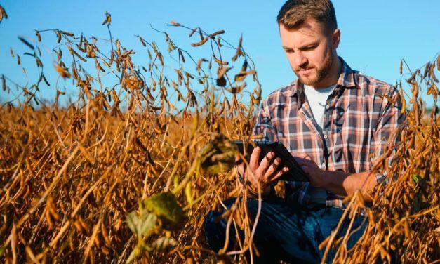Gavea lança primeira bolsa digital e sustentável de commodities agrícolas do país