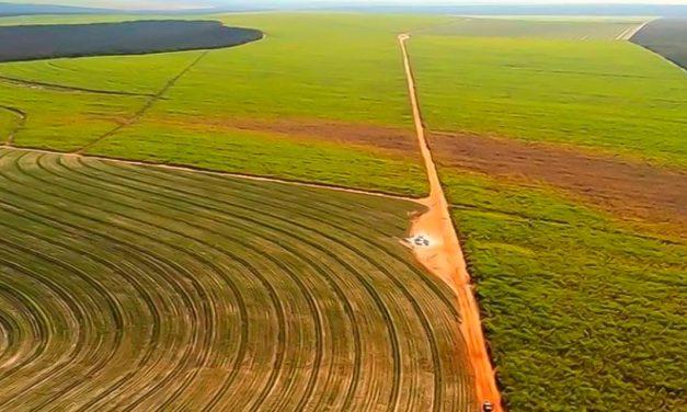Alta das commodities estimulam investimento em novas áreas de produção rural e promove valorização das terras